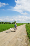 Woman with a dog goes on a country road Royalty Free Stock Image