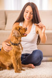 Woman with dog. Happy woman is playing with a dog and feeding him sitting on the floor at home Stock Photo