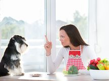 Woman and dog having lunch. Obedient dog and young woman having lunch at dining table Stock Photos