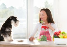 Woman and dog having lunch. Obedient dog and young woman having lunch at dining table Stock Photography