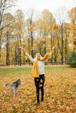 Woman and dog husky walking outdoor. In the yellow autumn park Royalty Free Stock Photo