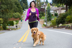 Woman and dog jogging. A pretty woman jogging with her golden retriever dog royalty free stock photography
