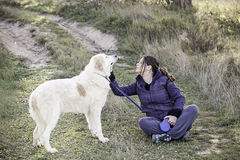 Woman with dog mastiff. Field, nature and animals Royalty Free Stock Images