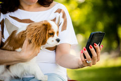 Woman, dog and mobile phone Royalty Free Stock Photo
