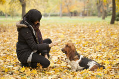 The woman with a dog in the park Royalty Free Stock Image