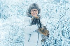 Woman with dog Pekingese in winter park stock images