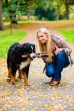 Woman and dog at retrieving stick game. In fall park on dirt path royalty free stock photography