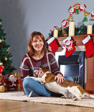Woman with dog in the room with Christmas decorations Stock Photos