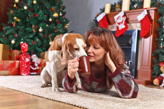 Woman with dog in the room with Christmas decorations Stock Images