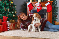 Woman with dog in the room with Christmas decorations Royalty Free Stock Image