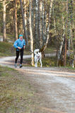 Woman with a dog run  in park Stock Photos
