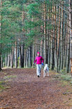 The woman with a dog run in a park. The woman with a dog run in a forest park royalty free stock photo