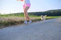 Woman with a dog running down a gravel street Royalty Free Stock Photos