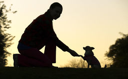 Woman and Dog`s Silhouette. A silhouette of a dog chihuahua and a woman holding hands Royalty Free Stock Images