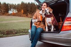 Woman and dog with shawls sits together in car trunk  on autumn. Road Stock Images