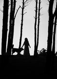 Woman and dog silhouettes Stock Photos