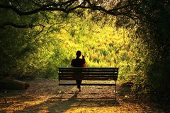 Woman with Dog Sitting on a Bench. Tree arch framing a woman with a dog sitting on a bench, looking at a green meadow Stock Photography