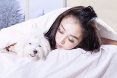 Woman with dog sleeping under a blanket Stock Images