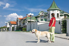 Woman with dog on street. Woman walking a dog on the street with nice houses in background. Real estate concept Royalty Free Stock Images