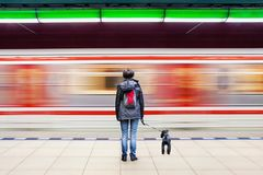 Woman with dog at subway station with blurry moving train stock photo