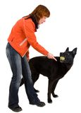 Woman is dog training Royalty Free Stock Image