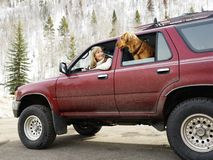 Woman and dog traveling. Woman and dog in dirt splattered SUV looking out windows at eachother in snowy countryside Stock Photo