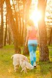 Woman with dog among trees Stock Photo