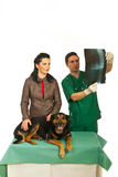 Woman with dog at vet office. Woman with veterinary men looking over dog X-ray image in his office against white background Royalty Free Stock Images