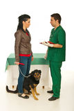 Woman with dog visit veterinarian. Woman with her dog having conversation with veterinarian men in his office Royalty Free Stock Images