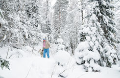 Woman with a dog on walk in a winter wood Royalty Free Stock Image