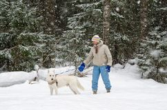 Woman with a dog on a walk in woods during a snowfall Royalty Free Stock Photography