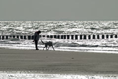 Woman and dog walking on the beach Stock Photo