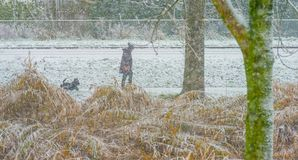 Woman with a dog walking in the snow Royalty Free Stock Image