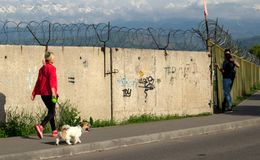 Woman with a dog walks along a fence with barbed wire royalty free stock photos
