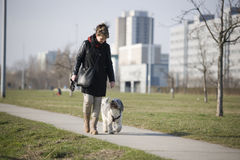 Woman with dog on a way Stock Photo