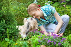 Woman with dog royalty free stock image