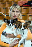 Woman with dogs. Woman and two dogs of breed papillon stock images