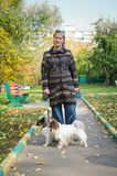 Woman with the dogs Stock Images