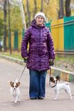 Woman with the dogs Royalty Free Stock Photography