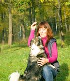 Woman with dogs Stock Photography