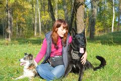 Woman with dogs Stock Image