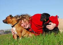 Woman and dogs. Young woman and her two dogs in a field Stock Photography