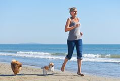 Woman and dogs on the beach. Woman and dogs running on the beach Royalty Free Stock Photo