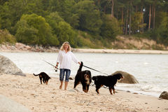Woman with dogs. Woman with her dogs on sea beach walking Stock Image
