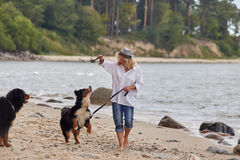 Woman with dogs. Woman with her dogs on sea beach walking Royalty Free Stock Image