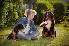 Woman with dogs Royalty Free Stock Image