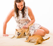 Woman and dogs Stock Photo