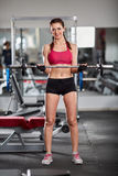 Woman doing barbell biceps curl Stock Images
