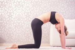 Free Woman Doing Cat Pose Royalty Free Stock Photo - 53592875