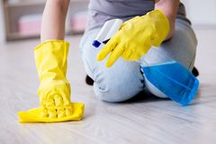 The woman doing cleaning at home Stock Photography